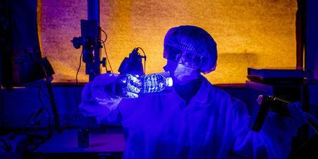 Portrait-robot génétique : vers une véritable «photographie» prédictive basée sur l'ADN | Transhumanisme | Scoop.it