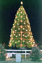 How Christians Have Secularized Christmas | Modern Atheism | Scoop.it