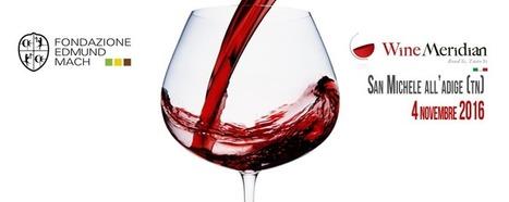 Marketing e vino: un seminario per affrontarlo - Enolò | Fondazione Mach | Scoop.it