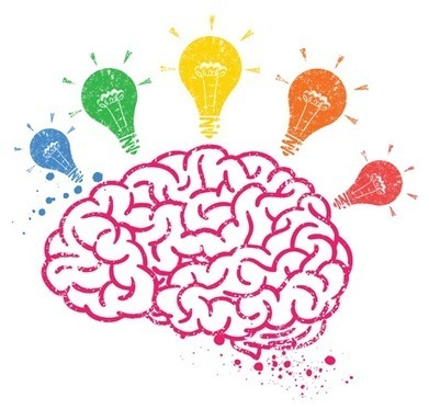 Education, the Brain and Common Core State Standards | CCSS News Curated by Core2Class | Scoop.it