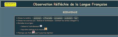 Exercices en ligne de français, pour l'école | pedagogie, TICE handicap, FLE, EFL | Scoop.it