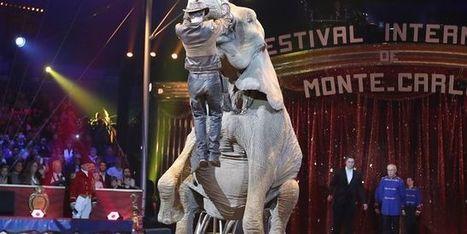 «Pour les animaux, vivre dans un cirque est comme être emprisonné chez le Dr. No» - le Monde | Actualités écologie | Scoop.it