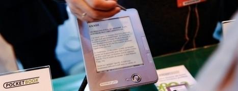 Les grands dossiers du ministère de la Culture pour 2014 (France Culture) | Bibliothèque | Scoop.it