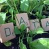 Veille Open Data France