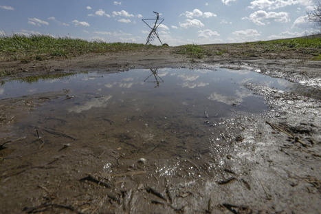 Drought eases in many places, fields turn to mud | Food issues | Scoop.it