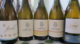 Lisboa: living up at last to its white wine potential | Wine Liquid Lisbon | Scoop.it