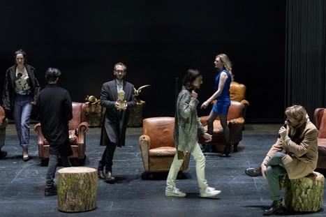 Une mouette et autres cas d'espèces : variations sur un même thème, par Hubert Colas   Revue de presse théâtre   Scoop.it