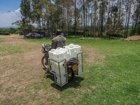 KENYA | A New Milk Can For The Developing World, Funded By Bill Gates | Food & Nutrition Security in East Africa | Scoop.it