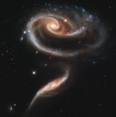 Picture of the Day: A Rose Made of Galaxies   Sizzlin' News   Scoop.it