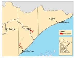 MN DNR: Land Transaction in Lake County Will Protect Working Forest | Timberland Investment | Scoop.it