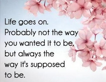 Life Goes On In Quotes Scoopit