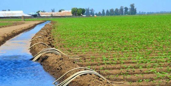 Maroc : L'irrigation améliore la gestion de l'eau face à la sécheresse