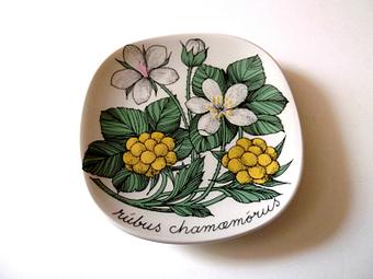 "Vintage Esteri Tomula ARABIA ""Cloudberry"", Rubus Chamaemorus, Plate | Vintage Passion | Scoop.it"