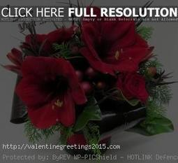 All New Happy Rose Day Love Quotes Romantic Cut