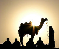 The Parable Teller: The Camel on the Roof   Philosophical wanderings   Scoop.it