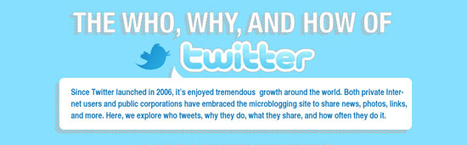 32 Amazing Twitter Infographics   visualizing social media   Scoop.it