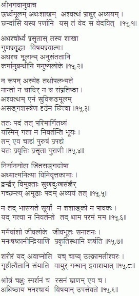 Visible analyst 76rar hit upclerunucof s srimad bhagavad gita in hindi pdf gita press gorakhpur free fandeluxe Images