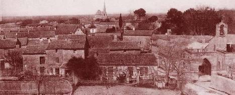L'affaire des arbres mutilés (Saint-Remy-de-Provence, 15 juillet 1837) | Rhit Genealogie | Scoop.it
