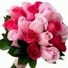 Hyderabad florist