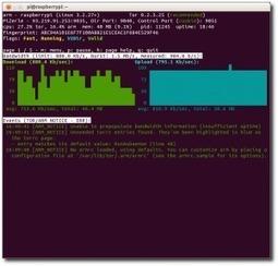 Raspberry Pi als TOR-Server (Update) | weezerle | My Social Networking Anchor | Scoop.it