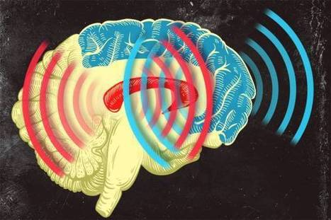Synchronized brain waves enable rapid learning ... | Exploring research and inquiry for effective learning | Scoop.it