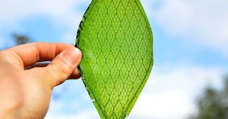Synthetic Photosynthesis? New Tech Recycles Carbon Dioxide Faster Than Plants | Sustainability Science | Scoop.it