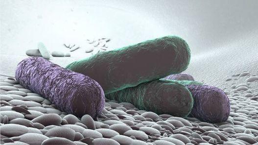 Prostatitis modern antibiotikumok C- vitamin és prostatitis