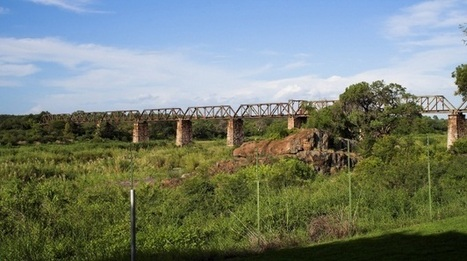 Skukuza Safari Lodge: SANParks invites public to comment - News24 | Kruger & African Wildlife | Scoop.it