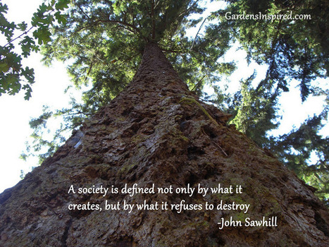 Quote by John Sawhill | The Muse | Scoop.it