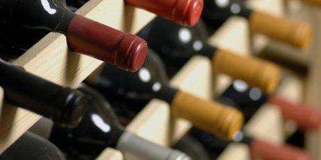 Les noms de domaine en .vin et .wine sont (enfin) lancés   Marketing et Numérique scooped by Médoc Marketing   Scoop.it