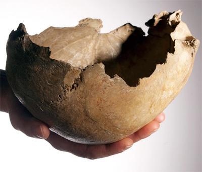 Pour la Science - Actualité - Le cannibalisme guerrier de Gough's Cave | Aux origines | Scoop.it