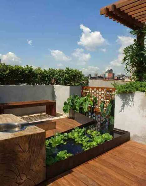 New York City Rooftop Garden Offers Views and Privacy | Urban Gardens | Unlimited Thinking For Limited Spaces | Urban Gardens | Community Gardening | Scoop.it