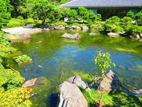 """Japan Guided Tour on Twitter: """"Excellent Japanese garden, Hayama http://t.co/Vrbf6fujkq"""" 