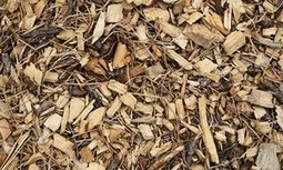 How to turn wood chips into a great compost heap | Alys Fowler | Gardening | Scoop.it