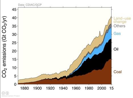 Carbon Budget | Agrarforschung | Scoop.it