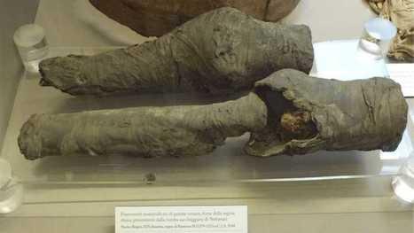 Arqueólogos atribuyen unas piernas momificadas a la reina Nefertari - RTVE.es | Egiptología | Scoop.it
