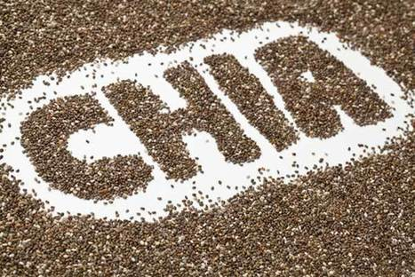 Chia seeds: Health with a crunchy taste | skillful means for conscious living | Scoop.it