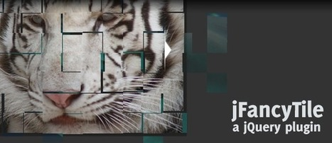 jFancyTile: A jQuery tile shifting image viewer plugin | Slideshow & Carousel Jquery | Scoop.it