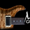 What's New at Max's Guitar Store