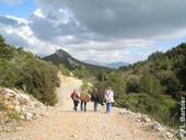 La Provence de Marcel Pagnol, randonnée pédestre dans les collines, par Voyages-sncf.com | 694028 | Scoop.it