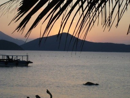 Vietnam : Suggestions de Circuits parmi Paysages et biodiversité | Circuits et voyages Vietnam | Scoop.it