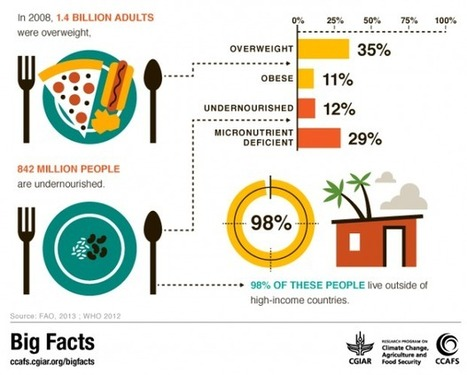 Big Facts: Focus on Food Security | CCAFS: CGIAR research ... | Geography | Scoop.it