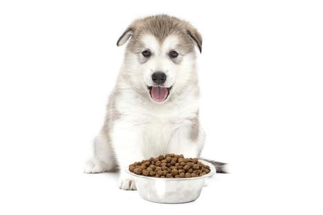 Grain Free Dog Food 101 | Look Great Naked... | Scoop.it