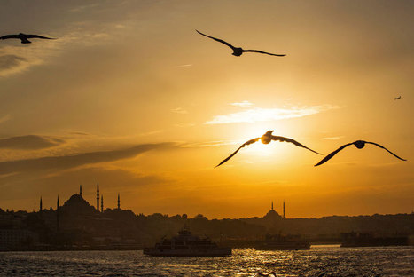 Istanbul and My Review of Fuji X100S | All about the gear | Scoop.it