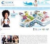 Gowex, le créateur de villes WiFi signe son premier contrat en France avec la mairie de Bordeaux| Artesi Île de France | Actualité etourisme | Scoop.it