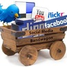 Social Marketing Insights