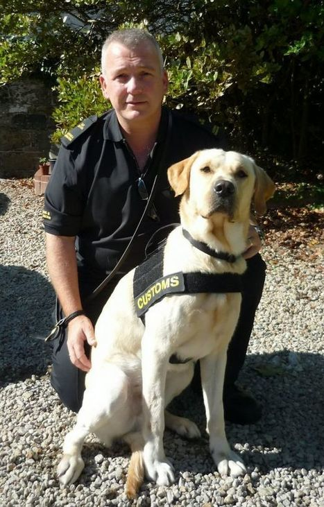 Dog handler wins employment tribunal case after he 'refused to abuse his dog'   Employment Law   Scoop.it