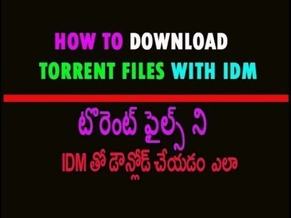 Nil Battey Sannata Full Movie Telugu Download Torrent
