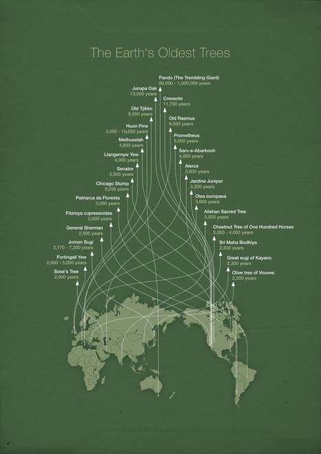 World Bank #Dataviz   Cyborgs_Transhumanism   Scoop.it