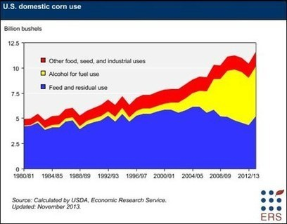 USDA ERS - Corn: Background | geographic world news | Scoop.it
